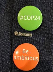 COP24_pin
